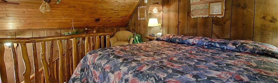 Cabin 4 at Bear Creek Motel & Cabins has one bedroom with a King sized bed