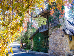 Quality Accommodation Pinos Altos NM - Bear Creek Motel & Cabins